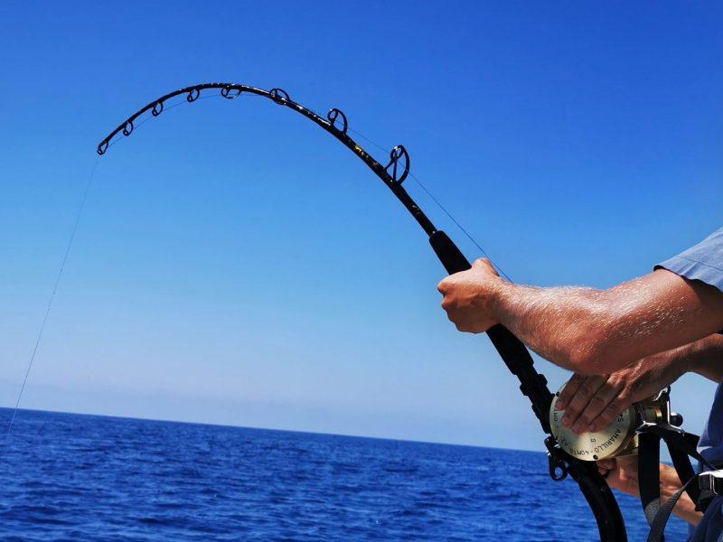 Charters de pesca privados para grupos con guia profesional de pesca deportiva desde embarcación, estamos en la costa dorada, desde Barcelona, hasta ...