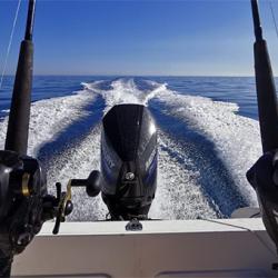 Como pescar a fondo